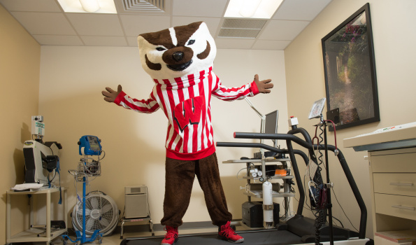 Bucky on exercise treadmill