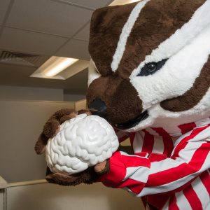 Bucky at the Alzheimer's Disease Research Center
