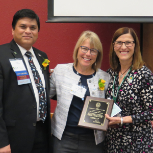 Ann Schmidt, MD, FACP (center), received the Distinguished Internist of the Year award at the 2019 ACP Wisconsin Chapter Scientific Meeting. Pictured with her is Noel Deep, MD, FACP, chapter governor (left), and Christine Seibert, MD, professor (CHS), General Internal Medicine, and associate dean for medical student education and services at the UW School of Medicine and Public Health. (Photo credit: American College of Physicians Wisconsin Chapter)